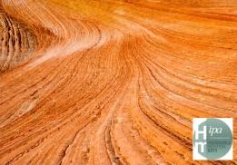 USA, Utah, Zion National Park