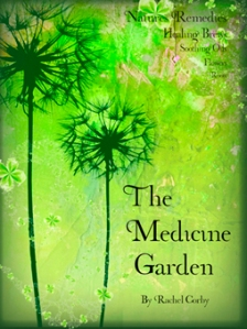Medicine Garden by Rachel Corby Cover, Photography Stephen Studd