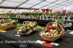 Prize winning veg