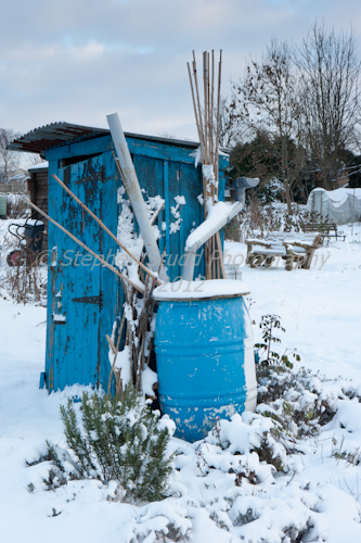 Blue shed on allotment covered in snow, wintertime