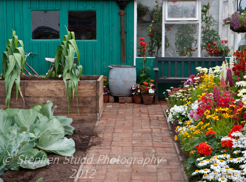 """""""The Schedule"""", awarded Gold Medal, RHS Flower Show Tatton Park,"""