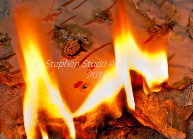 Birch bark burning