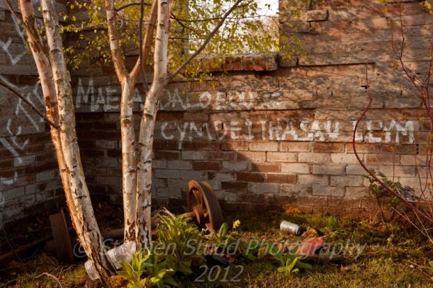 """Urban Oasis"" by Groundwork UK & RHS, Designer Chris Beardshaw, RHS Show Cardiff 2012"