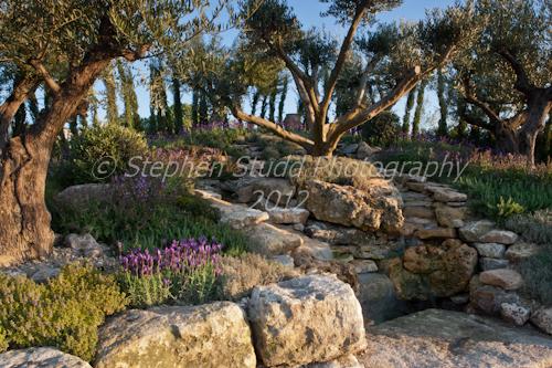 Un Poco de Hogar ( A Little Bit of Home) Awarded Silver Gilt Malvern Spring Gardening Show 2012
