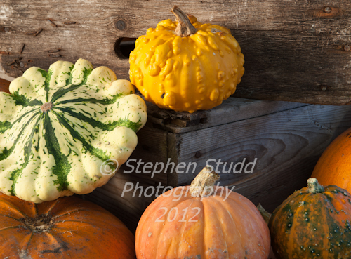 Malvern Autumn Show 2012 rustic display of pumpkin and squash on old wooden crates