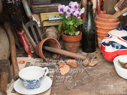 Garden Designer Mark Walker edible garden Dig For Victory awarded Silver Gilt flora Malvern Autumn show 2012