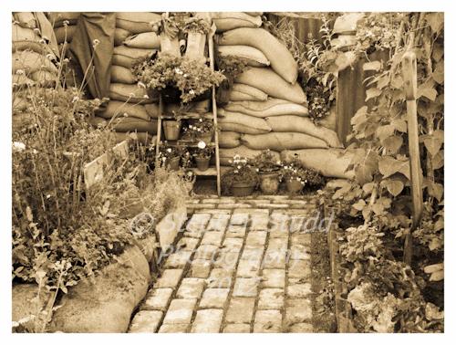 war garden Garden Designer Mark Walker edible garden Dig For Victory awarded Silver Gilt flora Malvern Autumn show 2012