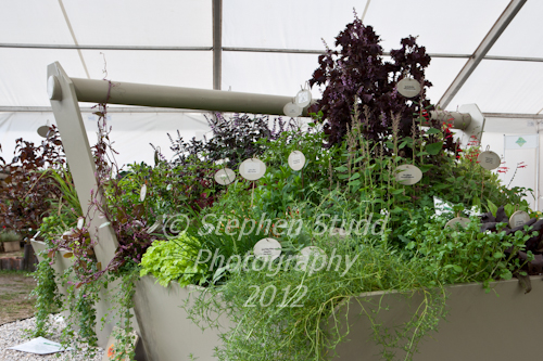The Cottage Herbery display awarded Silver Gilt Giant trug planted with herbs Malvern Autumn Show 2012