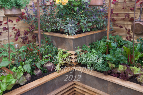 Designer Caspian Robertson of Surrey Gardens A la Mode Dining awarded Gold Medal in the edible gardens Malvern Autumnshow 2012
