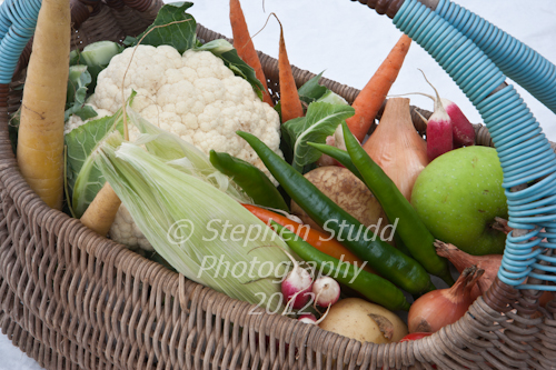 Pennard Plants basket of fresh vegetables vintage shopping basket old fashioned Malvern Autumn Show 2012