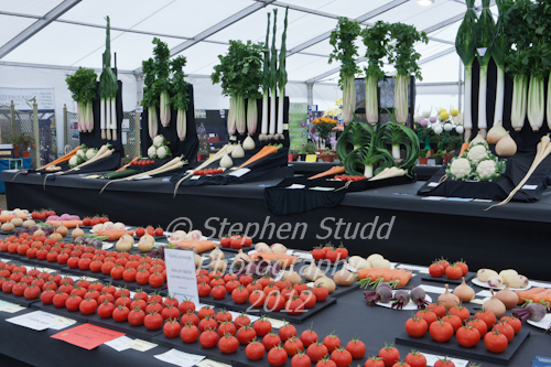 Vegetable competition Malvern Autumn Show 2012