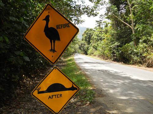 Cassowary sign Cape Tribulation