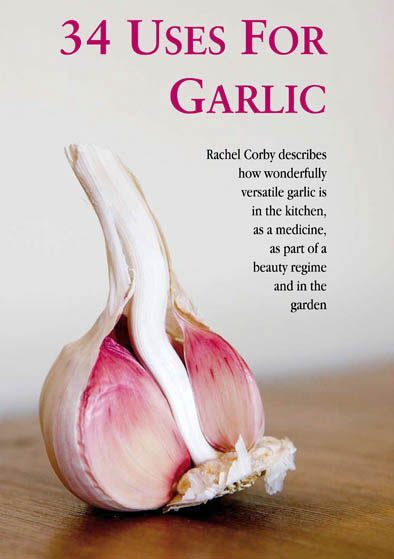 Garlic Article PM69 Spreads-1