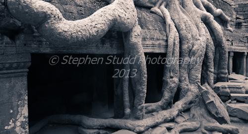 Asia, Cambodia, Siem Reap, Angkor wat