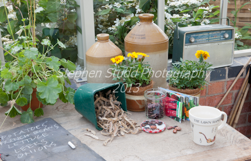 Interior of Hartley Botanic greenhouse Chelsea flower show 2012