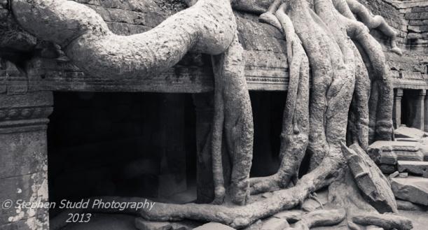 Asia, Cambodia, Siem Reap, Angkor wat, Ta Prohm temple.