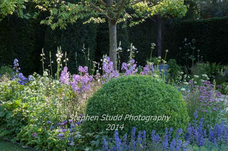 Chelsea RHS flower show 2014 - The M&G Garden - designer Cleve West - sponsors M&G Investments