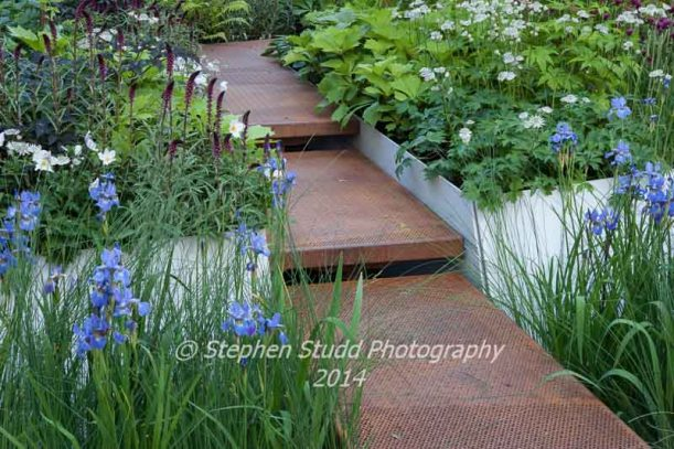RHS Chelsea flower show 2014 Royal Bank of Canada - Waterscape Garden - Designer Hugo Bugg - Sponsor RBC