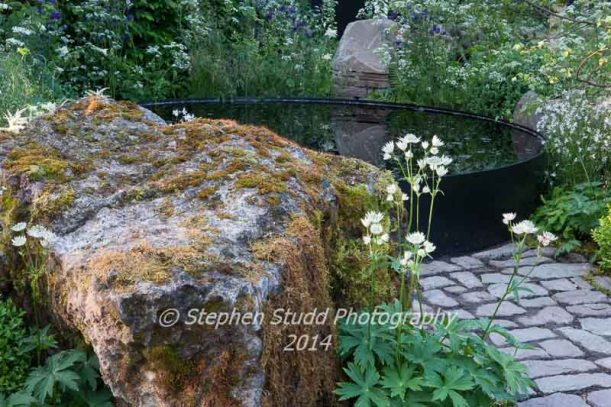 Vital Earth - The Night Sky Garden - Designers: David & Harry Rich - Sponsors: Bord Na Mona UK
