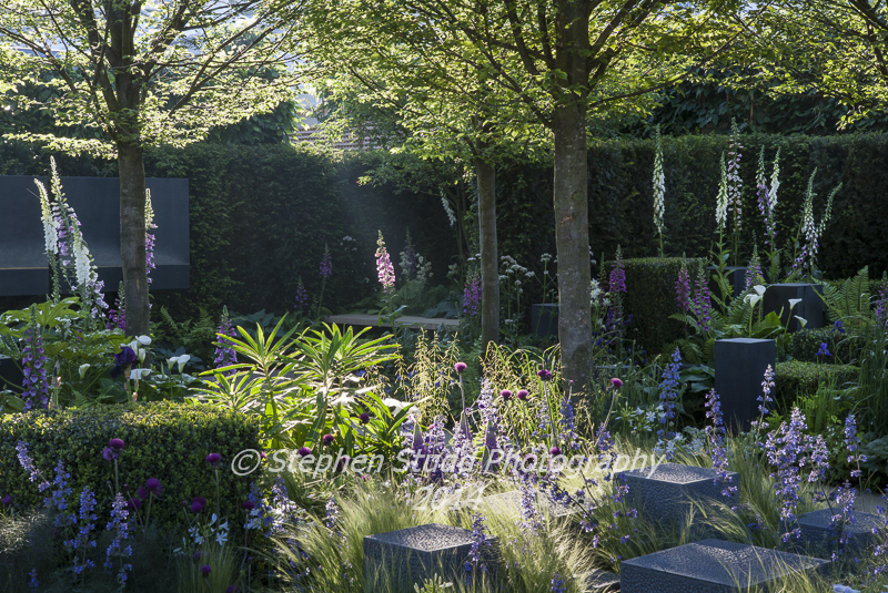 Rhs bbc people s choice chelsea flower show 2014 a for Garden design help
