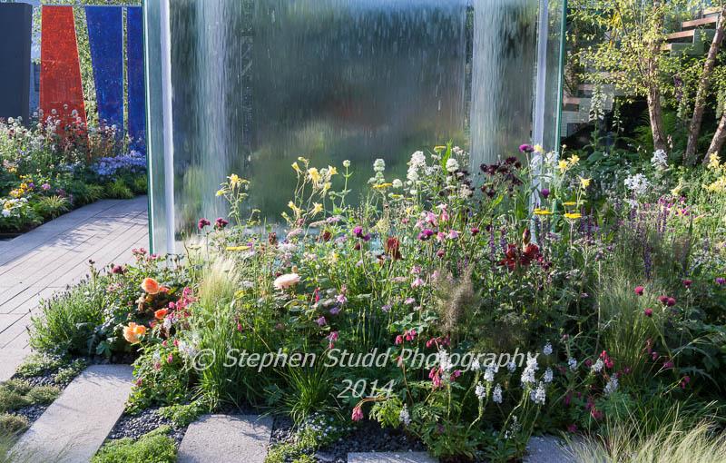 RHS Chelsea flower show 2014 - The Mind's Eye garden for the RNIB - Royal National Institute for the Blind - designers LDC Design - sponsors - Countryside - awarded best in show in the Fresh Gardens & Gold medal