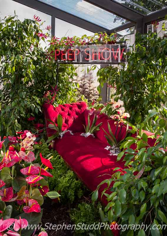 RHS Hampton Court Flower Show 2014 Stephen Studd photographyGarden - Lust - view of garden - Designer - Rachel Parker Soden - Sponsor - The RHS