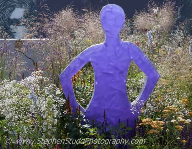 RHS Hampton Court flower show 2014 Stephen Studd photography - Garden - Pride - The Stonewall Garden Breaking Down the Walls of Pride - view of garden - Designer - Amanda Miller - Sponsor - The RHS