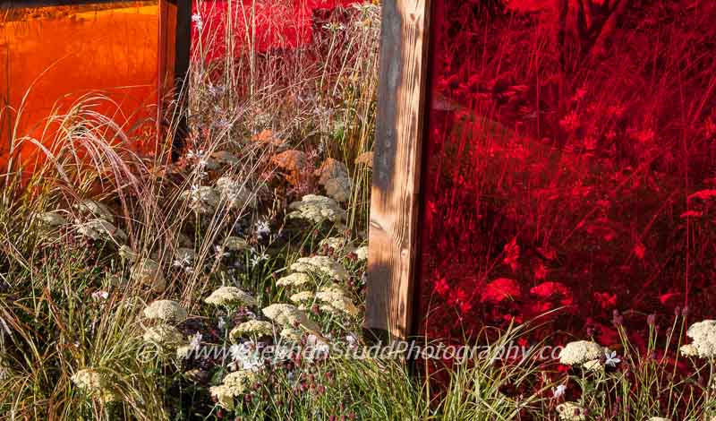 Tatton Park 2014 Cheshire RHS flower show Prehistoric Modernism garden designed by Alex Schofield one of the Young Designer of the Year Awards - Silver Gilt