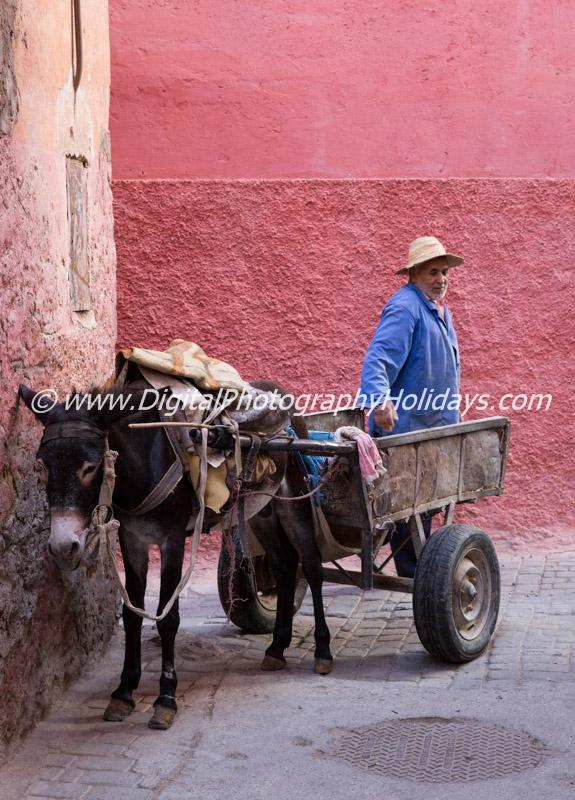 digital travel photography holidays tours workshops to Marrakech Morocco, Vietnam, Cambodia, Burma Asia hosted by Stephen Studd medina