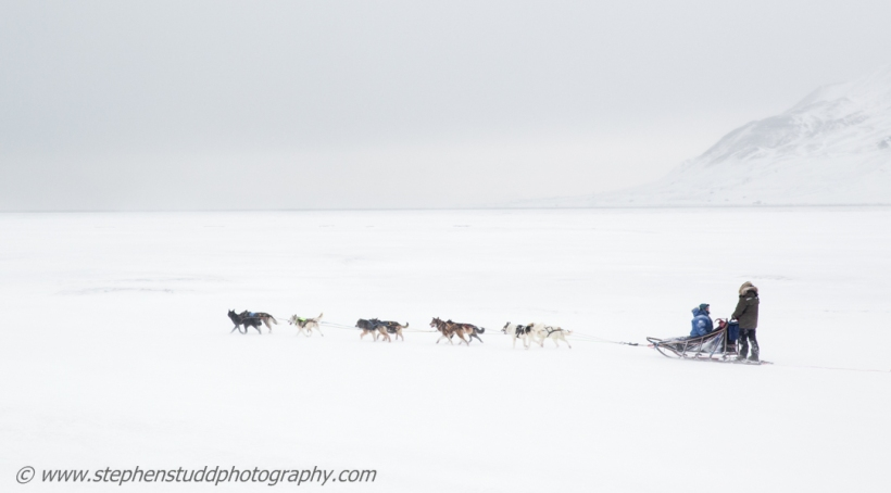Arctic circle, North polar region, Europe, Scandinavia, Norway, Svalbard, Spitsbergen, Longyearbyen, husky dog sled, dusk