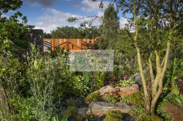 Paul Hervey-Brookes landscape garden designer, Chatsworth RHS Flower Show 2017,  IQ Quarry Garden, Gold medal, Best in Show and Best Construction, Photography by Stephen Studd photographer for Paul Hervey-Brookes Associates,   11 Lansdown, Stroud, Glouces
