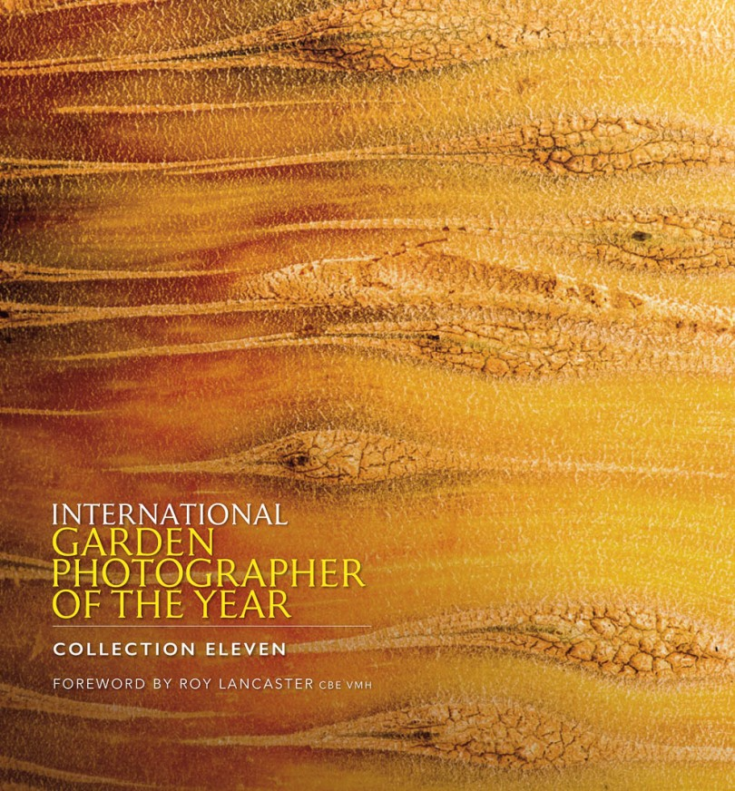 macro art photography workshop with stephen studd photographer IGPOTY front cover collection 11 International Garden Photographer of the Year 2017 2018