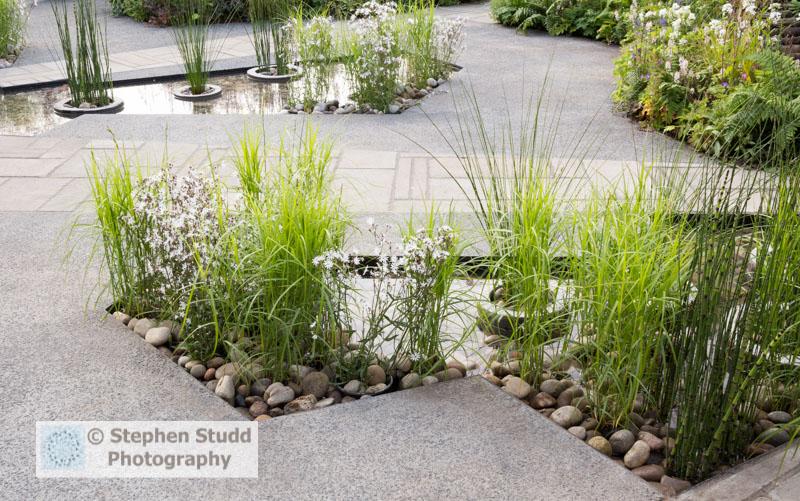 Greening Grey Britain Garden Nigel Dunnett RHS Chelsea Flower Sh