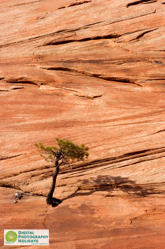 digital photography holidays vacations tours workshops to America USA American South West Canyonlands hosted by Stephen Studd