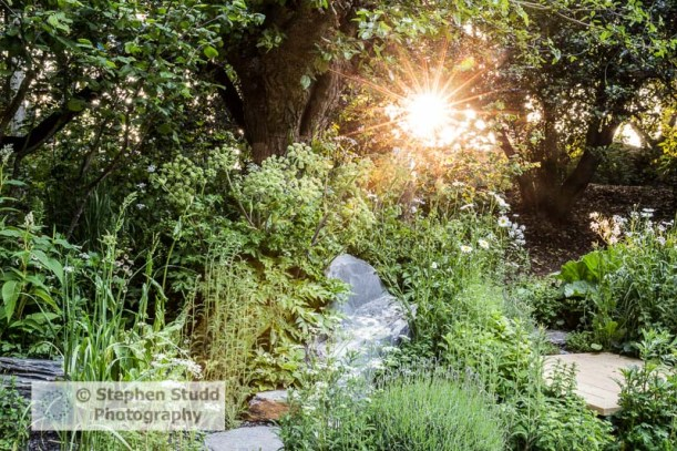 Paul Hervey-Brookes Associates,  11 Lansdown, Stroud, Gloucestershire, GL5 1BB, England, UK. landscape garden designer Viking Cruises Wellness garden gold medal RHS Chelsea Flower Show London UK 2018 photography by Stephen Studd photographer, Built by Gar