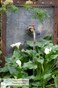 photographer: Stephen Studd - The High Maintenance Garden for Mo