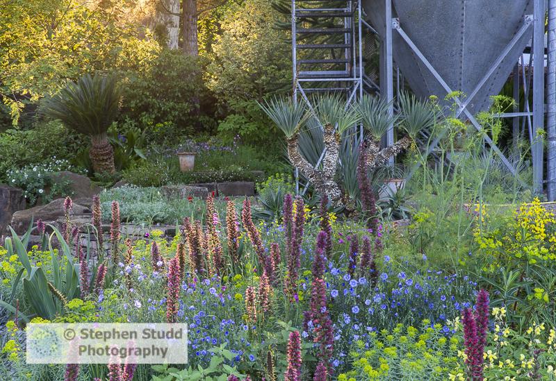 Photographer: Stephen Studd - The Resilience Garden - Border pla