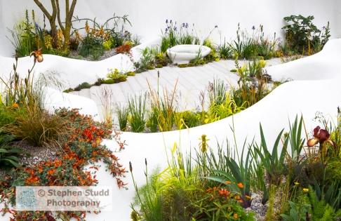 Stephen Studd - Pure Land Foundation garden - Jesmonite white waved walls, mixed planting with Iris 'Kent Pride', Milium effusum 'Aureum', - designer Fernando Gonzalez - sponsors Pure Land Foundation - awarded Silver gilt