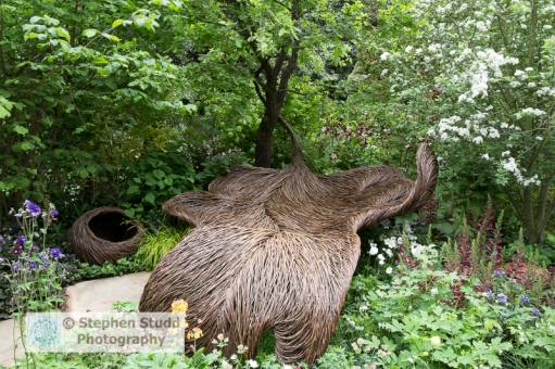 Stephen Studd - Breast Cancer Haven Garden – woven willow garden seat, planting of aquilegia, ladies mantle, primula, beech tree -Designer Sarah Eberle woven willow by Tom Hare - Sponsor – Nelsons – awarded Gold and best Artisan garden