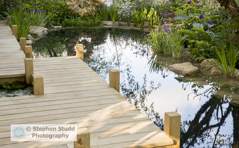 Stephen Studd - The M & G Garden  The Retreat -wooden jetty over natural swimming pond pool, water marginal plants -designer Jo Thompson - sponsors M & G Investments awarded silver gilt medal