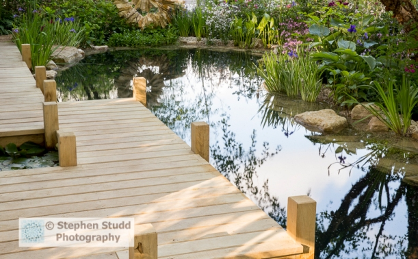 Stephen Studd - The M & G Garden  The Retreat -wooden jetty over natural swimming pond pool, water marginal plants -designer Jo Thompson - sponsors M & G Investments awarded silver gilt medal
