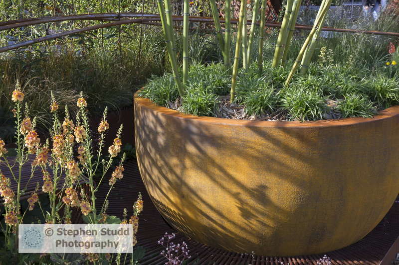 Stephen Studd - Dark Matter Garden - bamboo in large rusted steel container and Verbascum -designer Howard Miller Design Ltd - sponsors Science and Technology Facilities Council – Liverpool John Moores University – Urbis Design - awarded