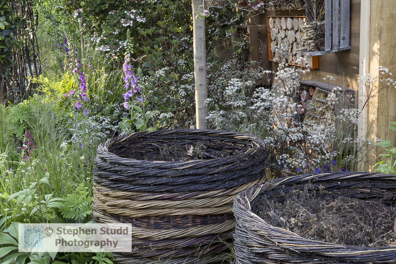 Photographer: Stephen Studd  -  The RHS Greening Grey Britain Garden, woven willow compost bins, insect hotel on side of shed, Digitalis purpurea and cow parsley - Designer Anne Marie Powell - Sponsor: RHS