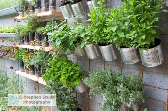 Photographer:Stephen Studd - The Lemon Tree Trust garden, vertical vegetable and herb garden, herbs grown in unusual containers, old plastic bottles and tin cans, parsley, mint, strawberries, thyme - Designer: Tom Massey - Sponsor: Lemon Tree Trust